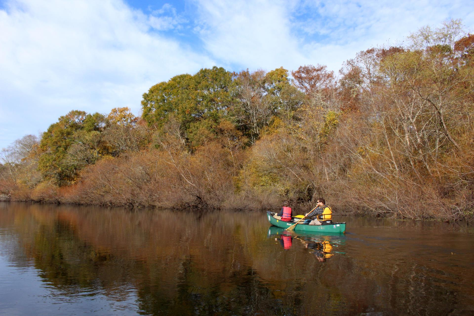 Image of people canoeing on the Edisto River